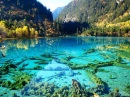 Crystalline%20Turquoise%20Lake,%20Jiuzhaigou%20National%20Park,%20China%20(1)